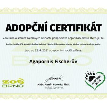 zoo_adopcni_osvedceni_1106503